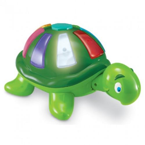 Smart Safari ™ Color Fun Turtle