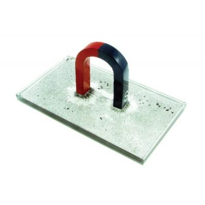 Magnetic Field Demonstration Set